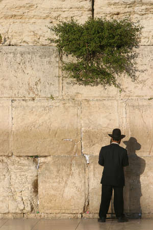 Orthodox Jew at the Western Wall Stock Photo