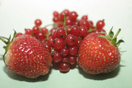 Strawberries and red currants.  Macro, shallow DOF with focus on the center of the image .