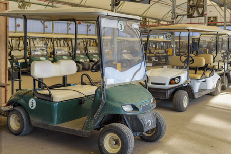 Rent of safari wagons, velomobile. Tours, bird watching. Active rest and recreation in Agamon Hula, Israel Imagens