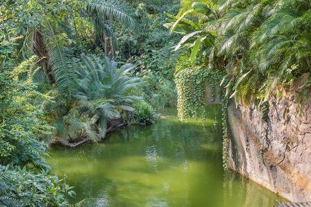Amusement park. Attraction River in the tropics. Landscape Imagens