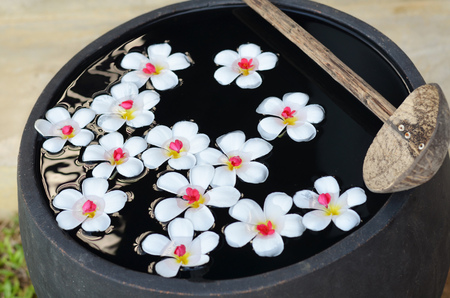 Floating templetree flowers floating on water in huge bowl photo