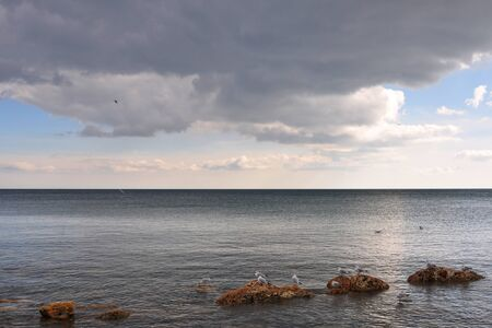 In the foreground, in cloudy weather, seagulls are sitting on red stones, which protrude from the sea under a thick cloud, with a horizon line between the sea and the sky in spring visible from behind.