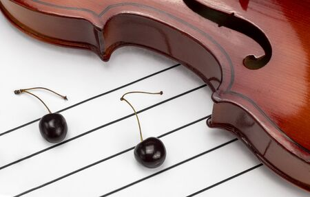 Violin with notes of cherries. Music camp. Musical instrument. On a white background. Still life. Close-up.