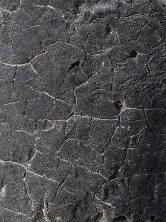 Texture. Charred wood. Cracks, ebony.