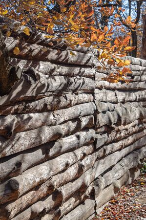 A fence of old logs. Wall of wooden boards.