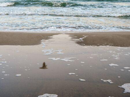 Sea waves on the coast.