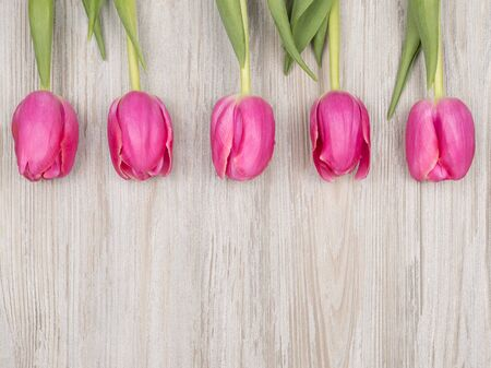 Spring pink tulips on wooden background. The view from the top. Holiday card. Spring mood. Archivio Fotografico