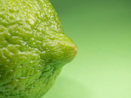 Lime on a green background. Macro photography. Ripe citrus. 写真素材