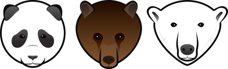snout: vector bears