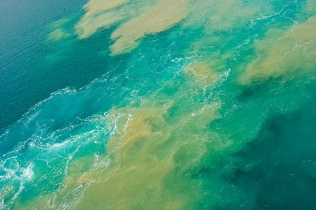 gulf of mexico: Oil spill in the Gulf of Mexico