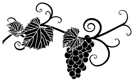 Grape silhouette with vines and leaves Vector