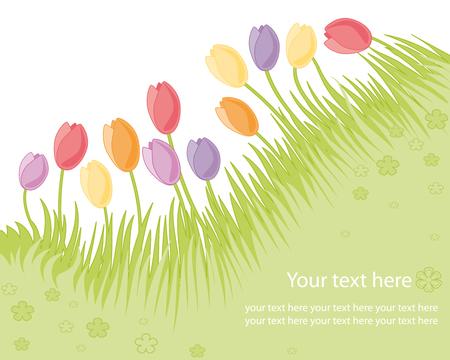 Spring garden with tulips Stock Vector - 6353846
