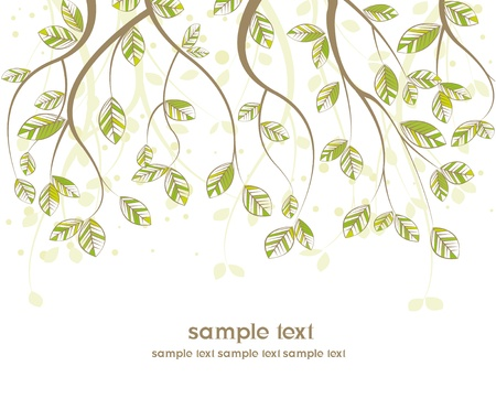 branches with leaves on white background