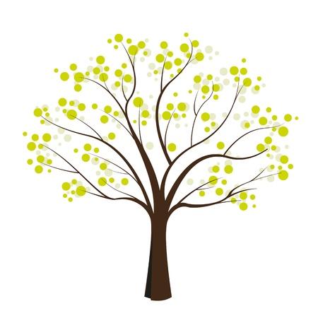 grande e piccolo: albero verde su sfondo bianco