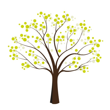 huge tree: green tree on white background