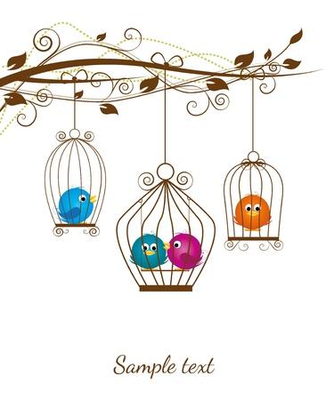 uccelli su ramo: uccelli colorati in una gabbia su uno sfondo bianco