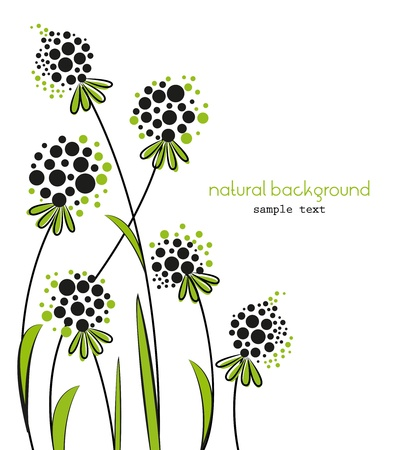Floral abstract background on a white background