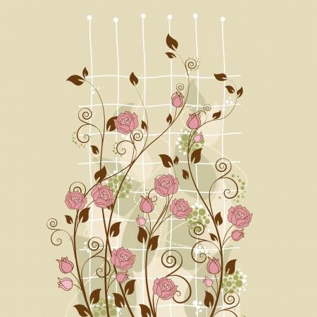 beautiful pink rose in the garden Stock Vector - 13735492