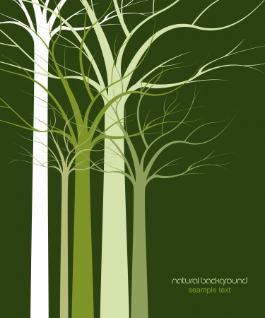 natural background of trees without leaves Vector