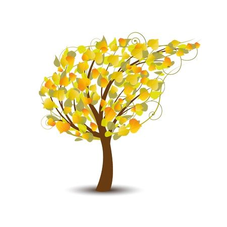 arboles frondosos: árbol de otoño abstracto sobre un fondo blanco