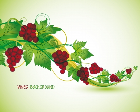branch with red grapes in the background Vector
