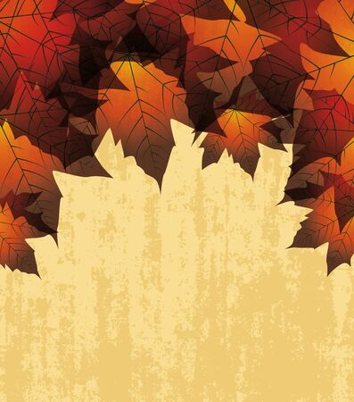 autumn leaves in the background Stock Vector - 14323986