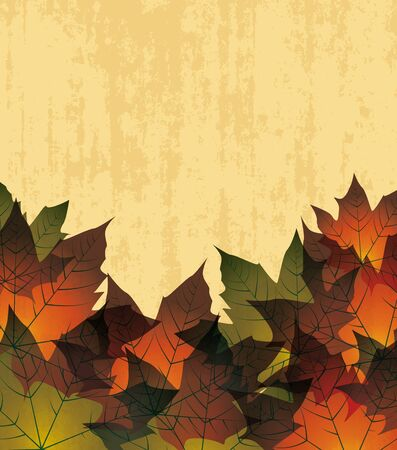 autumn leaves in the background Stock Vector - 14323985
