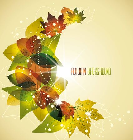 the swirling leaves in the autumn colors Stock Vector - 14439418