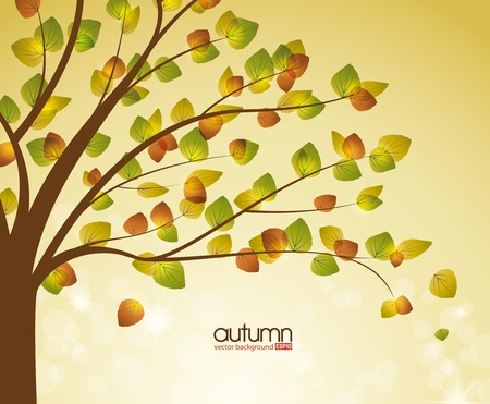 autumn trees: abstract background with autumn tree