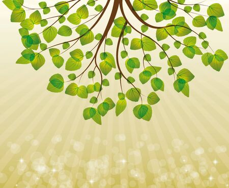 spring branch with  green leaves Stock Vector - 17081258