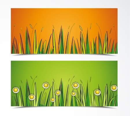 two color background with grass and flowers Stock Vector - 17170356