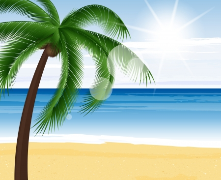 coconut tree: Beautiful view on sunny day on the beach Illustration