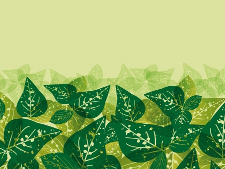 background with green leaves Stock Vector - 19867860
