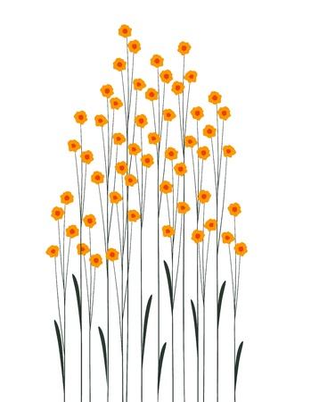 Dekoration mit Blumen auf einem weißen Hintergrund