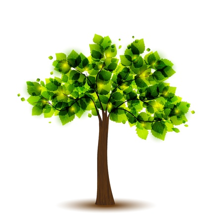 green tree on a white background Stock Vector - 21470605