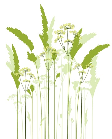 Silhouette meadow flowers and grass on a white background Vector