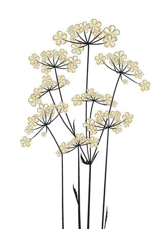 silhouette fleur: Fleurs des champs sur un fond blanc
