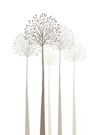 dibujo: Los árboles con hojas sobre fondo blanco Vectores