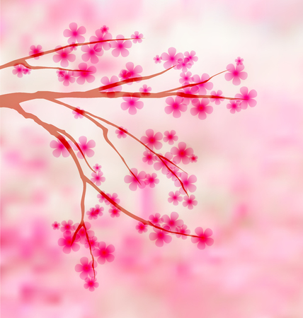 Sakura background with place for text Vector