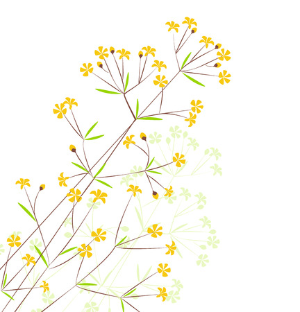 Decoration of flowers on a white background Vector