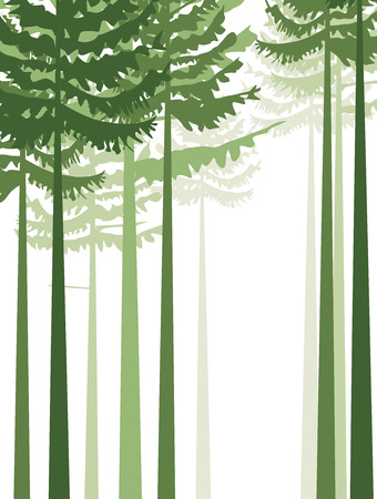 Group of trees on a white background Vector