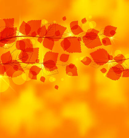 Vector autumn leaves on brightly colored background Vector