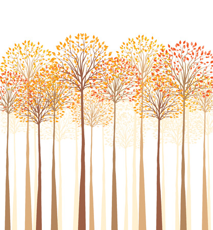 Vector autumn tree on a white background Çizim
