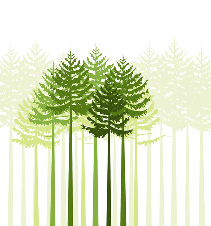Group of trees on a white background