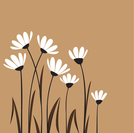 Vector flowers with white petals on a browm background Vector