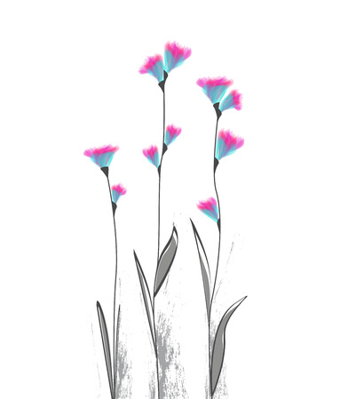 Vector illustration of flowers on a white background Illustration