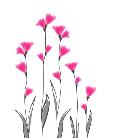 grass silhouette: Vector illustration of flowers on a white background Illustration