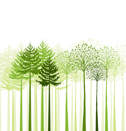 Vector green mixed forest, landscape of trees