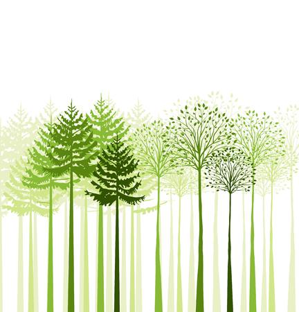 Vector groen gemengd bos, landschap van bomen