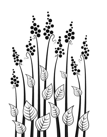 black and white plant: abstract decorative meadow flowers, floral silhouette Illustration